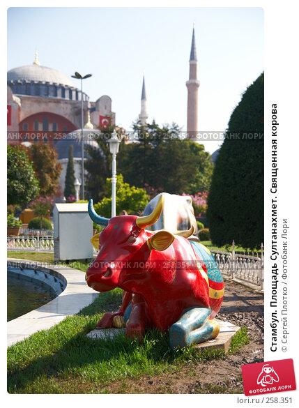 Стамбул. Площадь Султанахмет. Священная корова, фото № 258351, снято 31 августа 2007 г. (c) Сергей Плотко / Фотобанк Лори