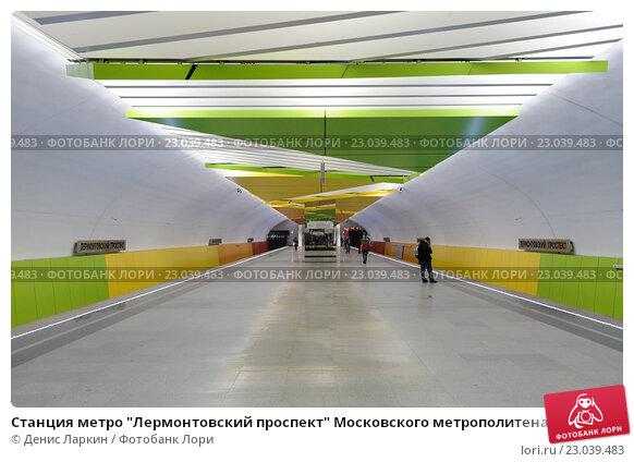 метро лермонтовсий проспект москва такое энцефалопатия