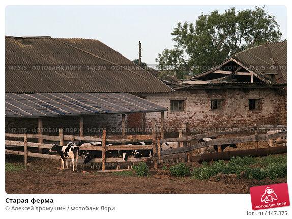 Старая ферма, фото № 147375, снято 11 июня 2007 г. (c) Алексей Хромушин / Фотобанк Лори