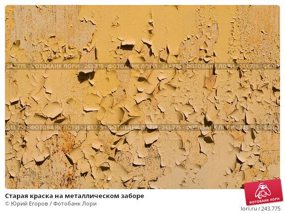 Старая краска на металлическом заборе, фото № 243775, снято 5 апреля 2008 г. (c) Юрий Егоров / Фотобанк Лори