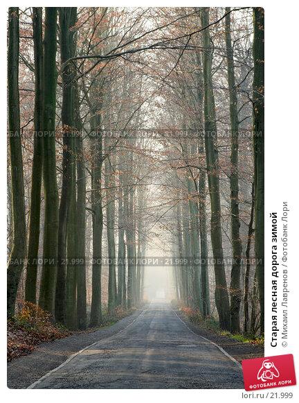 Старая лесная дорога зимой, фото № 21999, снято 1 февраля 2006 г. (c) Михаил Лавренов / Фотобанк Лори