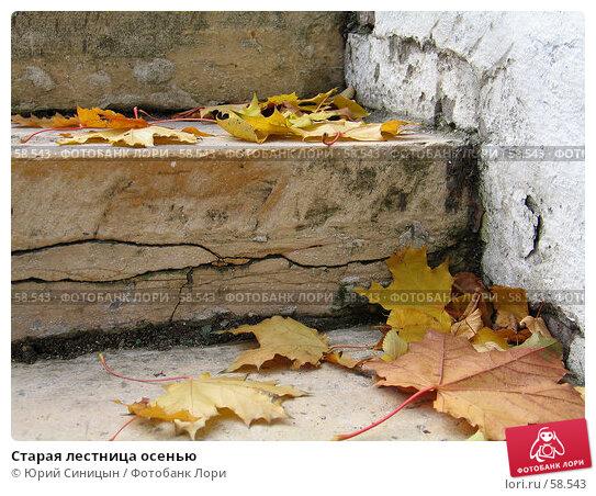 Старая лестница осенью, фото № 58543, снято 16 октября 2004 г. (c) Юрий Синицын / Фотобанк Лори