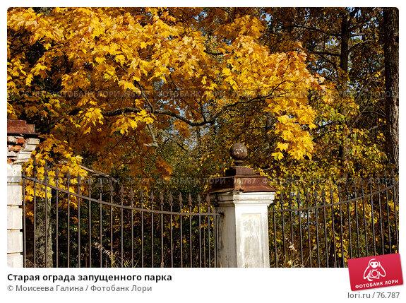 Старая ограда запущенного парка, фото № 76787, снято 7 октября 2006 г. (c) Моисеева Галина / Фотобанк Лори