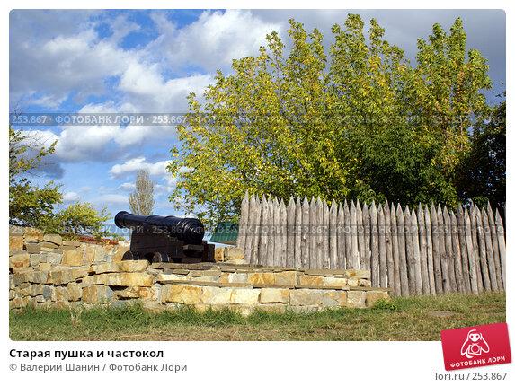 Старая пушка и частокол, фото № 253867, снято 17 сентября 2007 г. (c) Валерий Шанин / Фотобанк Лори