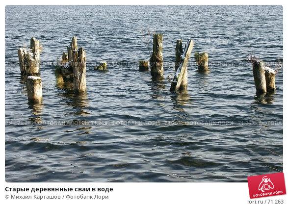 Старые деревянные сваи в воде, эксклюзивное фото № 71263, снято 5 ноября 2006 г. (c) Михаил Карташов / Фотобанк Лори