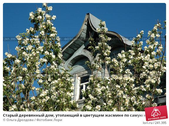 Старый деревянный дом, утопающий в цветущем жасмине по самую крышу, фото № 241395, снято 5 июля 2005 г. (c) Ольга Дроздова / Фотобанк Лори