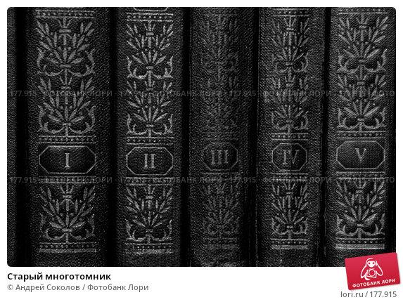 Купить «Старый многотомник», фото № 177915, снято 10 января 2008 г. (c) Андрей Соколов / Фотобанк Лори