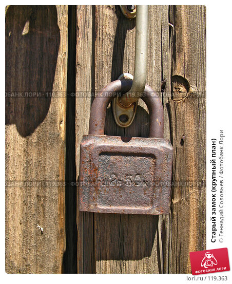 Купить «Старый замок (крупный план)», фото № 119363, снято 20 июня 2007 г. (c) Геннадий Соловьев / Фотобанк Лори