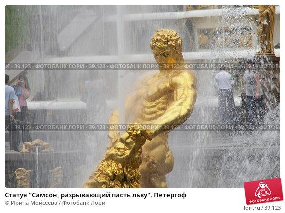"""Статуя """"Самсон, разрывающий пасть льву"""". Петергоф, эксклюзивное фото № 39123, снято 25 июня 2006 г. (c) Ирина Мойсеева / Фотобанк Лори"""