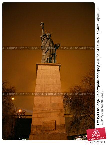 Статуя Свободы на острове посередине реки Сена в Париже, Франция, фото № 102315, снято 26 мая 2017 г. (c) Harry / Фотобанк Лори