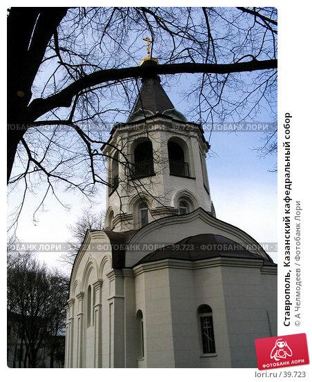 Ставрополь, Казанский кафедральный собор, фото № 39723, снято 4 января 2005 г. (c) A Челмодеев / Фотобанк Лори