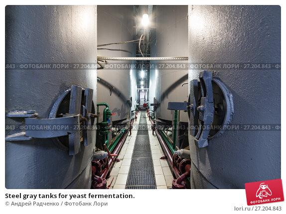 Купить «Steel gray tanks for yeast fermentation.», фото № 27204843, снято 6 июля 2017 г. (c) Андрей Радченко / Фотобанк Лори