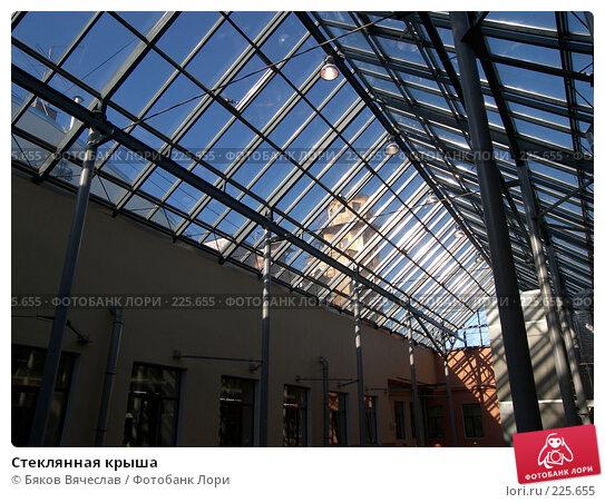 Стеклянная крыша, фото № 225655, снято 26 февраля 2008 г. (c) Бяков Вячеслав / Фотобанк Лори
