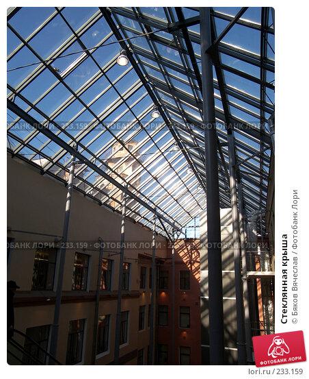Купить «Стеклянная крыша», фото № 233159, снято 26 февраля 2008 г. (c) Бяков Вячеслав / Фотобанк Лори