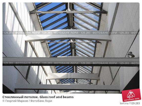 Стеклянный потолок. Glass roof and beams, фото № 129283, снято 15 марта 2007 г. (c) Георгий Марков / Фотобанк Лори