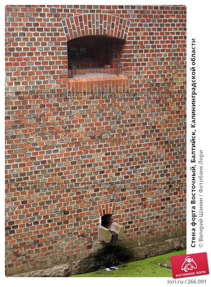 Стена форта Восточный, Балтийск, Калининградской области, фото № 266091, снято 24 июля 2007 г. (c) Валерий Шанин / Фотобанк Лори