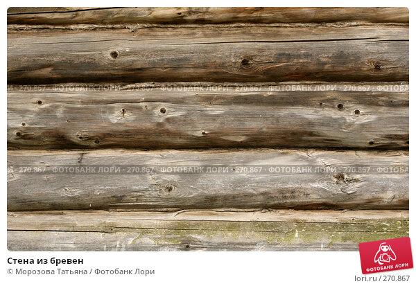 Стена из бревен, фото № 270867, снято 28 июля 2007 г. (c) Морозова Татьяна / Фотобанк Лори
