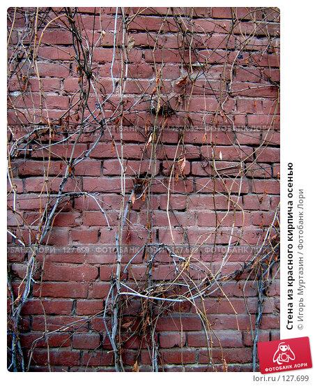 Купить «Стена из красного кирпича осенью», фото № 127699, снято 25 апреля 2018 г. (c) Игорь Муртазин / Фотобанк Лори