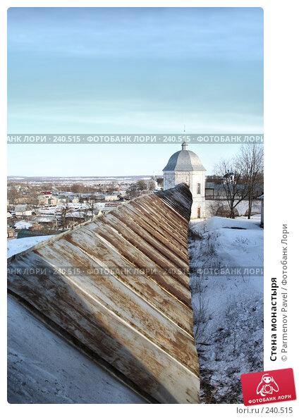 Стена монастыря, фото № 240515, снято 24 февраля 2008 г. (c) Parmenov Pavel / Фотобанк Лори