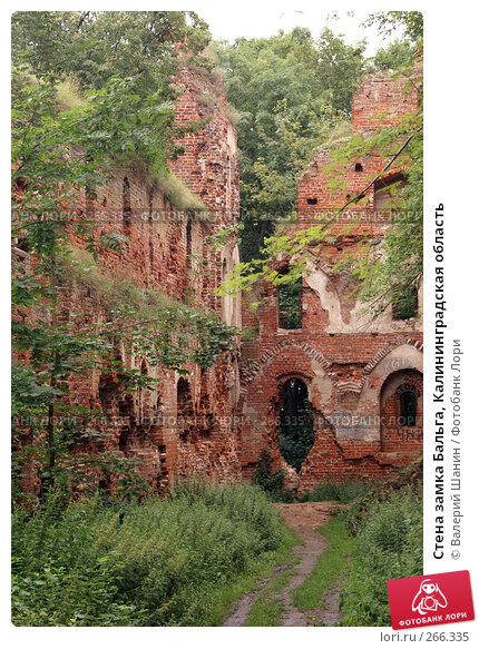 Стена замка Бальга, Калининградская область, фото № 266335, снято 29 июля 2007 г. (c) Валерий Шанин / Фотобанк Лори