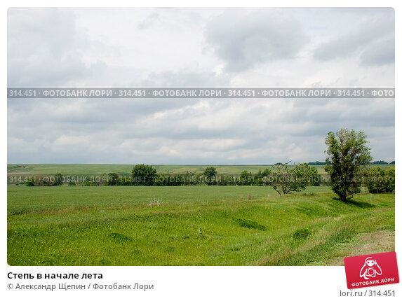 Степь в начале лета, эксклюзивное фото № 314451, снято 5 июня 2008 г. (c) Александр Щепин / Фотобанк Лори