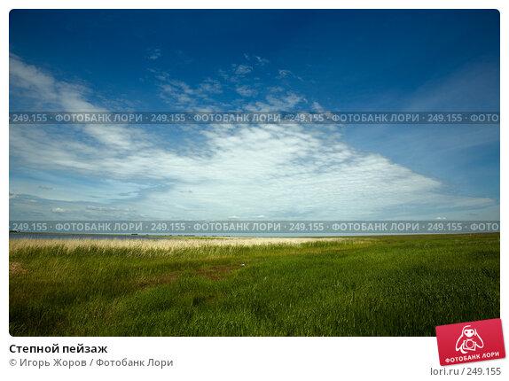 Купить «Степной пейзаж», фото № 249155, снято 16 июня 2007 г. (c) Игорь Жоров / Фотобанк Лори