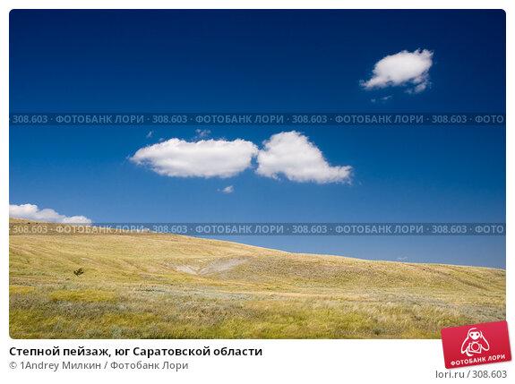 Купить «Степной пейзаж, юг Саратовской области», фото № 308603, снято 19 июля 2007 г. (c) 1Andrey Милкин / Фотобанк Лори