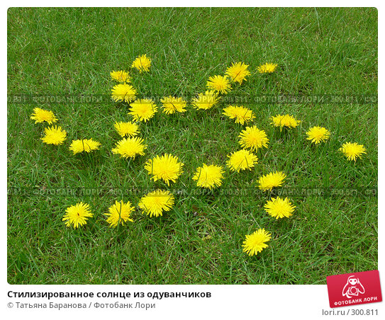 Стилизированное солнце из одуванчиков, фото № 300811, снято 17 мая 2008 г. (c) Татьяна Баранова / Фотобанк Лори