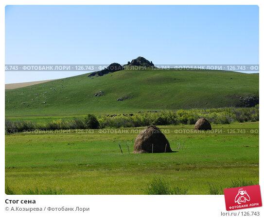 Купить «Стог сена», фото № 126743, снято 27 августа 2007 г. (c) A.Козырева / Фотобанк Лори