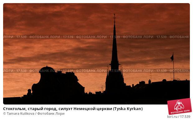 Купить «Стокгольм, старый город, силуэт Немецкой церкви (Tyska Kyrkan)», фото № 17539, снято 29 декабря 2006 г. (c) Tamara Kulikova / Фотобанк Лори