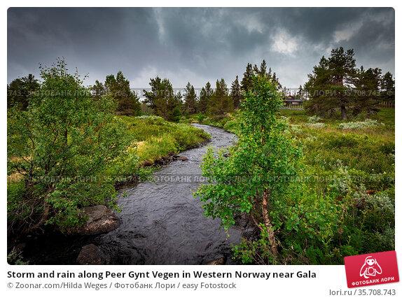 Storm and rain along Peer Gynt Vegen in Western Norway near Gala. Стоковое фото, фотограф Zoonar.com/Hilda Weges / easy Fotostock / Фотобанк Лори