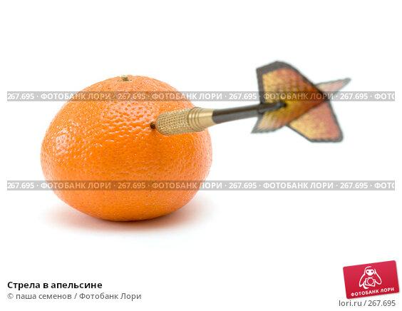 Купить «Стрела в апельсине», фото № 267695, снято 28 марта 2008 г. (c) паша семенов / Фотобанк Лори