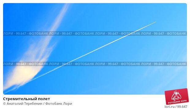 Стремительный полет, фото № 99647, снято 11 октября 2007 г. (c) Анатолий Теребенин / Фотобанк Лори