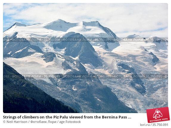 Strings of climbers on the Piz Palu viewed from the Bernina Pass ... Стоковое фото, фотограф Neil Harrison / age Fotostock / Фотобанк Лори