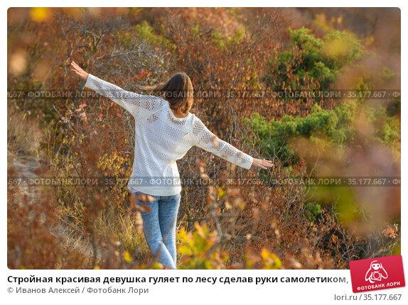 Стройная красивая девушка гуляет по лесу сделав руки самолетиком, вид со спины. Стоковое фото, фотограф Иванов Алексей / Фотобанк Лори