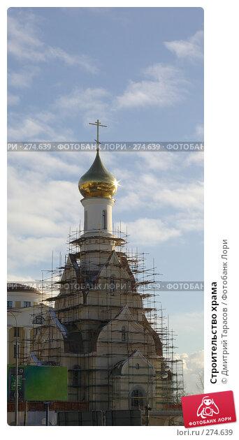 Строительство храма, фото № 274639, снято 27 января 2008 г. (c) Дмитрий Тарасов / Фотобанк Лори