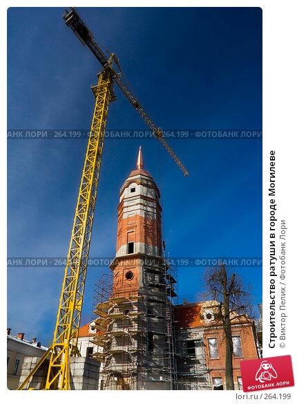 Строительство ратуши в городе Могилеве, фото № 264199, снято 25 апреля 2008 г. (c) Виктор Пелих / Фотобанк Лори