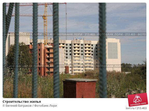 Купить «Строительство жилья», фото № 213403, снято 20 августа 2007 г. (c) Евгений Батраков / Фотобанк Лори