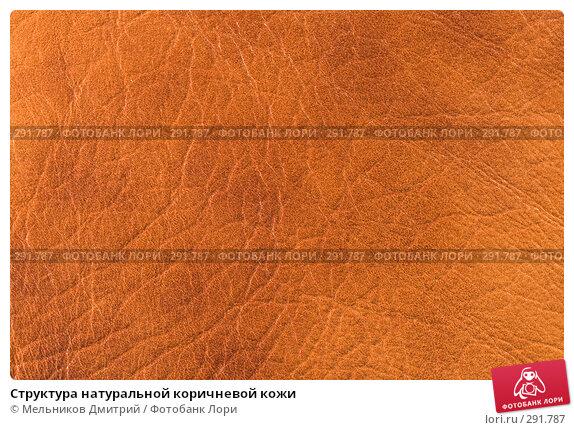 Структура натуральной коричневой кожи, фото № 291787, снято 11 мая 2008 г. (c) Мельников Дмитрий / Фотобанк Лори