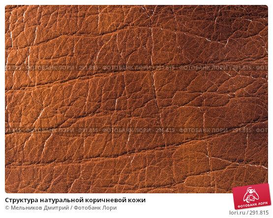Структура натуральной коричневой кожи, фото № 291815, снято 11 мая 2008 г. (c) Мельников Дмитрий / Фотобанк Лори