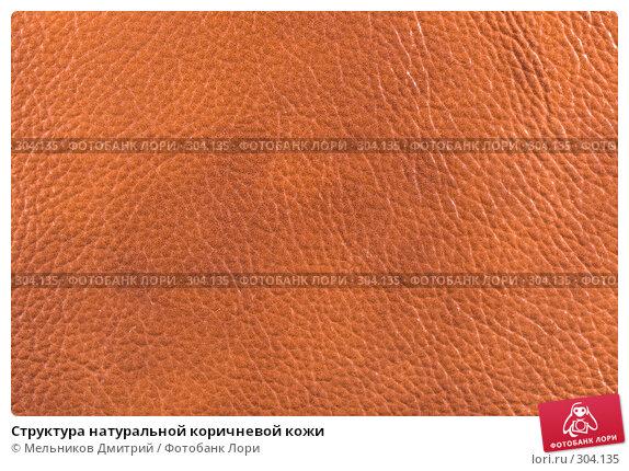 Структура натуральной коричневой кожи, фото № 304135, снято 11 мая 2008 г. (c) Мельников Дмитрий / Фотобанк Лори
