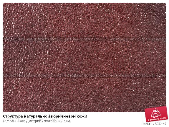 Структура натуральной коричневой кожи, фото № 304147, снято 11 мая 2008 г. (c) Мельников Дмитрий / Фотобанк Лори
