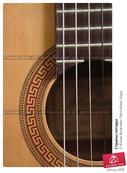 Струны гитары, фото № 975, снято 25 февраля 2006 г. (c) Юлия Яковлева / Фотобанк Лори