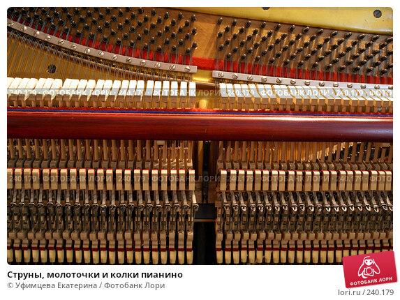 Струны, молоточки и колки пианино, фото № 240179, снято 22 января 2017 г. (c) Уфимцева Екатерина / Фотобанк Лори