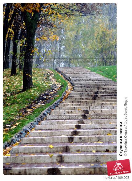Ступени к осени, фото № 109003, снято 19 октября 2007 г. (c) Ткачёва Ольга / Фотобанк Лори