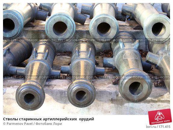 Стволы старинных артиллерийских  орудий, фото № 171415, снято 23 декабря 2007 г. (c) Parmenov Pavel / Фотобанк Лори