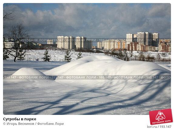 Купить «Сугробы в парке», фото № 193147, снято 3 февраля 2008 г. (c) Игорь Веснинов / Фотобанк Лори