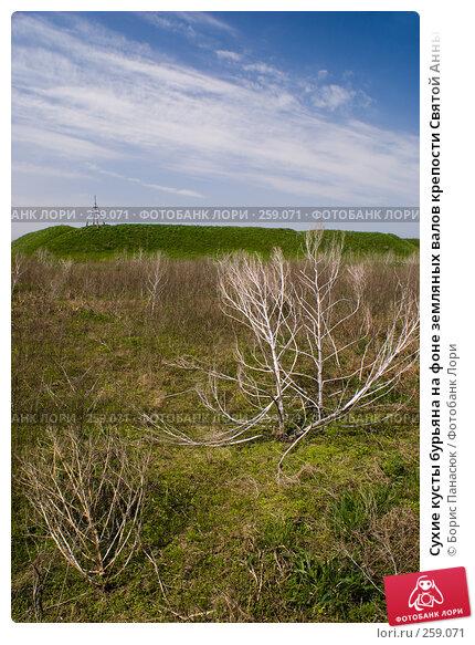 Сухие кусты бурьяна на фоне земляных валов крепости Святой Анны, фото № 259071, снято 19 апреля 2008 г. (c) Борис Панасюк / Фотобанк Лори