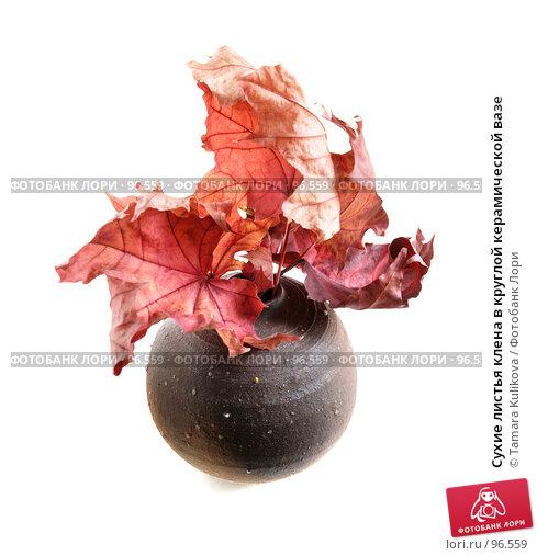 Купить «Сухие листья клена в круглой керамической вазе», фото № 96559, снято 11 октября 2007 г. (c) Tamara Kulikova / Фотобанк Лори