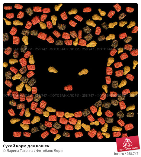 Сухой корм для кошек, фото № 258747, снято 23 июля 2017 г. (c) Ларина Татьяна / Фотобанк Лори